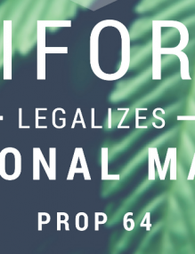 How To Start A Cannabis Venture In California?